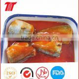 Canned Style Mackerel Tin Fish in Tomato Sauce