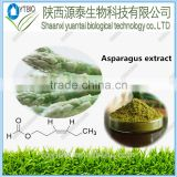 Supply 10:1 20:1 Asparagus Root Extract Powder