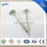 umbrella head galvanized roofing screw nail
