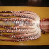 cooked Octopus--seafood