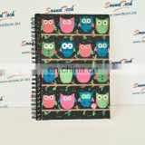 LED Light Up & Real Animal Owl Sound Journal