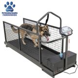 dog treadmill cheap,large dog treadmill,for hydrotherapy,China factory