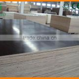 Best Formwork Film Faced Plywood 18mm laminated high quality construction material marine plywood