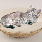 Guangzhou Exporter Wholesale pot shape cat cave banana leaf cat bedding