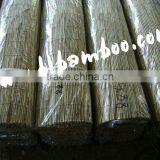 Natural reed fences for garden or home decoration