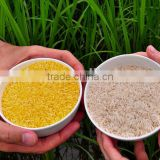 Artificial Rice Machine/Machinary/Processing Line/plant                                                                         Quality Choice
