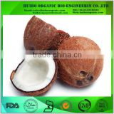 Best price of natural coconut milk powder bulk package