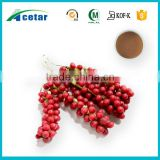 HACCP factory manufacturing plant extract schizandra berry benefits 2% and 8% schisandrins