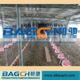 Hottest Sale Controlled Chicken Sheds for Poultry Farm