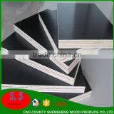 building construction materials cement plywood board brown film faced plywood