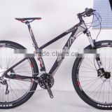 30S Carbon Fiber mountain bike 29er