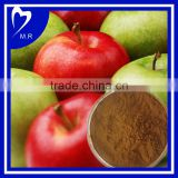 bulk powder 100% Natural Apple Polyphenol Extract, Apple extract powder