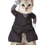 Lovely Cosplay pet's clothes