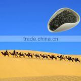 China green tea Factory 41022AAA for Morocco, Algeria, Senegal, Guinea, Liberia, Cote divoire, Ghana, Togo, etc