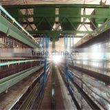 export of an automatic poultry farming feeding watering system for laying hens(chickens eggs)