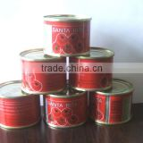 Gino canned tomato paste in china,fresh ingredient