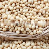 baoquan squid coated peanuts