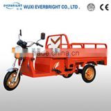 HOT EEC/EC/CE/COC Electric Cargo Tricycle ,truck cargo motorcycle tricycle,small cargo tricycle/rickshaw