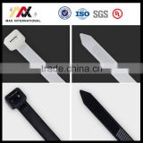 Black White Nylon Cable Ties with Mounting Hole