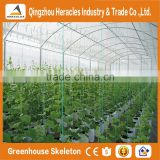 Heracles Economical Plastic Commercial low cost multi span plastic greenhouses with automatic irrigation system