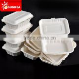 Takeaway bagasse food lunch boxes