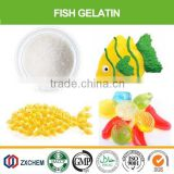 edible fish gelatin powder from fish skin/scale                                                                         Quality Choice