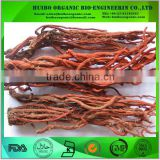 organic korean red ginseng capsules / slices