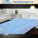Elastic Band Disposable Bed Cover Bed Sheet