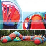 Lazy Insect PVC Inflatable Tunnel