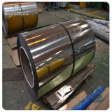 Hot selling 304 316 coil sandblast stainless steel price per ton