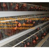 Indonesia Chicken Supplier Hot Galvanized Cage & A Type Battery Female Chicken Cage & Breeding Layer Egg Coop for Poultry Farm in Chicken Shed