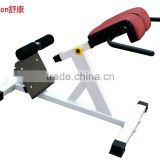 SK-233 Back extension gym machine sports fitness equipment China