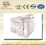 Multi-functional walk in chiller with wall-mounted refrigeration unit