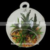 American market popular artificial glass bowl plant for interior ornaments