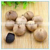 High quality solo clove black garlic