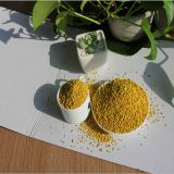 Bee Pollen Extract Powder in Bulk Wholesale