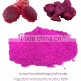 Dry Fruit Export to US : Freeze Dried Red Dragon fruit powder from Thailand [ Thai Ao Chi ]