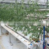 PVC Hydroponic pipe 120mmx80mm for crop growing