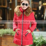 2014 new Korean large yards thick raccoon Nagymaros collar down jacket and long sections Slim coat large size women