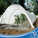 Agricultural Cover PP Spun-Bonded Non-Woven Greenhouse