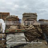 PP Big Ropes/Big Ropes in Bales/Plastic Scraps/