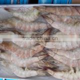 sea frozen vannamei white shrimp