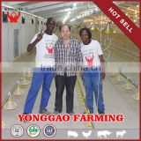 Automatic Poultry House Animal feeding line for broiler chicken Poultry equipment in Animal feeding system