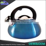 High quality stainless steel color coating silicone handle whistling tea kettle 4L