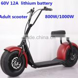 Newest popular citycoco 800W Electric Scooter/brushless motor scooter/ widen tire scooter (TKE-S800)