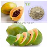 Bulk dried papaya powder with natural ingredient