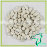 Types Of Dry White Kidney Beans Origin China
