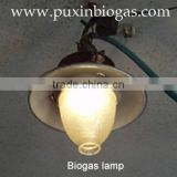 Biogas lamp with electronical fire maker