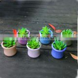 Whosale various colours smail decoration ceramic flower pots with hole for succulent plant