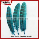 reeves cheap Natural Pheasant Tail Pheasant Feather for sale
